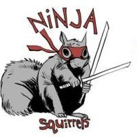 ninjasquirrel2.JPG